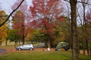 蒜山オートキャンプ場の秋