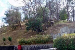 王墓の丘史跡公園