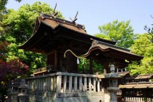 阿智神社本殿