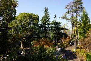 倉敷みらい公園ー散策路ー