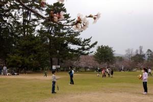 倉敷酒津公園