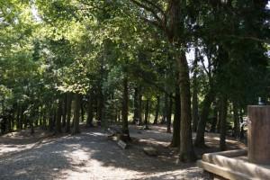 竜天天文台公園ーキャンプサイトー