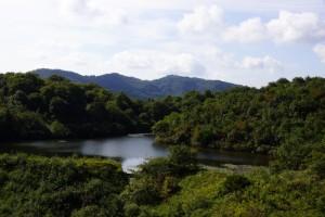 倉敷美しい森ー山の上池ー