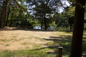 藤波池キャンプ場ーテントサイトー