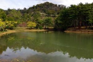 亀島キャンプ場ー亀島池ー
