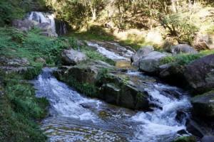 鳴滝森林公園キャンプ場ー鳴滝ー