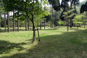 トムソーヤ冒険村キャンプ場ーテントサイトー
