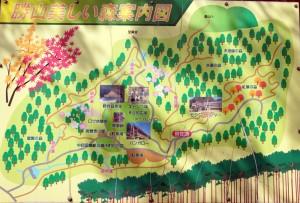 勝山美しい森ー案内図ー