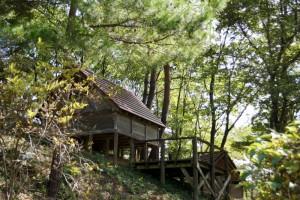 勝山美しい森ーミニバンガロー