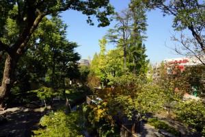 倉敷みらい公園ー遊歩道・倉敷用水ー