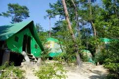国立吉備少年自然の家ーテントサイトー