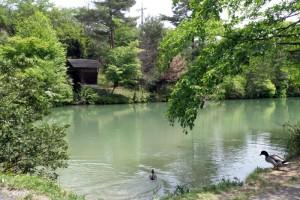 能登香の里・小房キャンプ場ーたわだ池ー