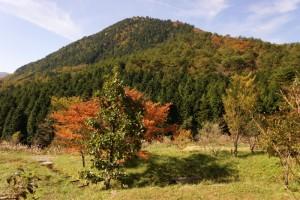 新見美しい森ー剣山ー