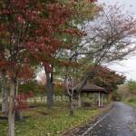 蒜山高原自転車道