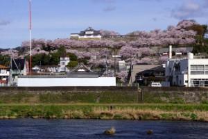 津山城ー吉井川よりー