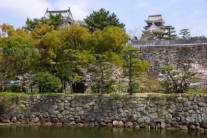 岡山城ー西方よりー