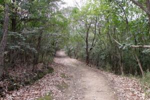吉備の中山登山道