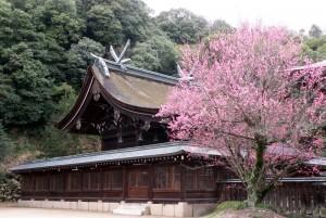 本殿ー吉備津彦神社ー