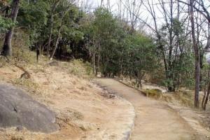 古墳群内の遊歩道ー王墓の丘史跡公園ー