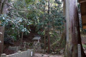 阿波八幡神社社叢