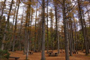 からまつ園地ー岡山県立森林公園ー