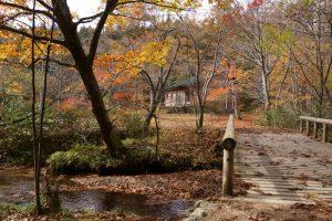 休憩舎ー岡山県立森林公園ー