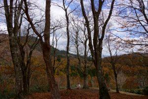 北展望台ー岡山県立森林公園ー