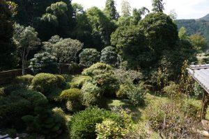 庭園ー椎の木御殿ー