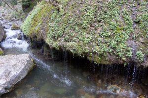 玉垂れの滝ー神庭の滝ー