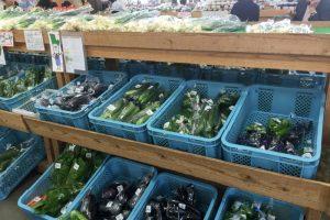 野菜売場ーサンヒルズー