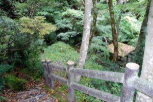 滝への道ー蛇淵の滝ー