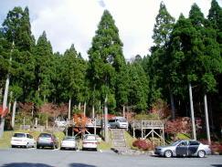 駐車場ー若杉天然林ー