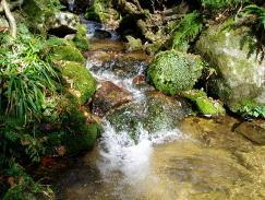 吉野川水源