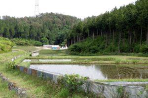 水田ー健康の森学園ー