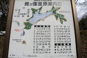 案内図ー鯉が窪湿原ー