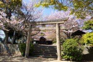 金比羅宮・荒神社