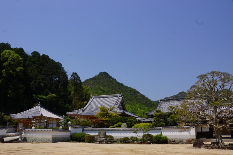 照光山安養寺