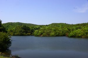 大池ー岡山県自然保護センターー