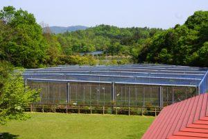 タンチョウ飼育施設ー岡山県自然保護センターー
