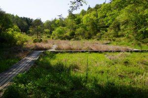 湿性植物園ー岡山県自然保護センターー