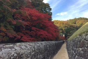 石塀と紅葉ー閑谷学校、資料館への通路ー