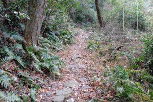 石畳の登山道ー常山城跡ー