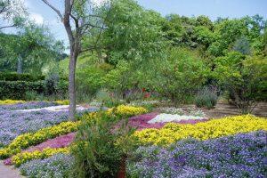 エントランス前花壇ー深山イギリス庭園ー