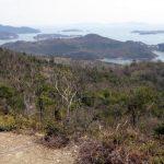 大平山野鳥の森