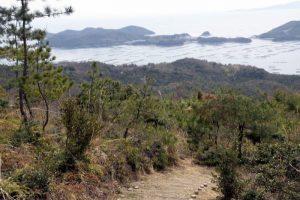 散策路ー大平山野鳥の森ー
