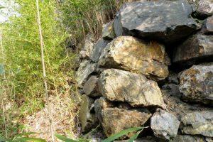 本丸の石垣ー常山城跡ー
