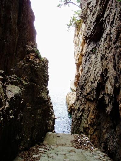 三郎洞窟への道ー大多府島ー