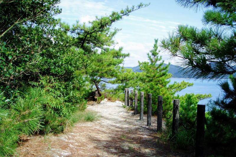 自然研究路ー大多府島ー