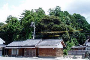 吉川八幡の森ー郷土記念物ー