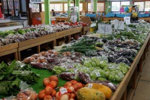 新鮮野菜売り場ーかよう青空市ー